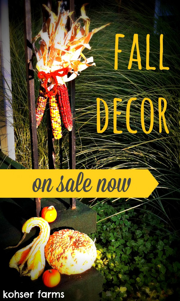 fall decor ad