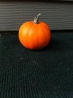 2 Mini Pumpkins